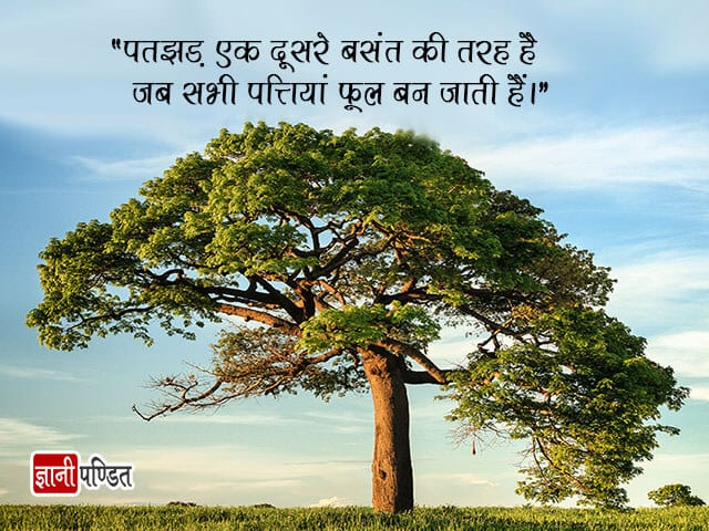 Inspirational Quotes on Flowers in Hindi